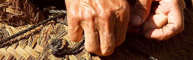 grow_hands
